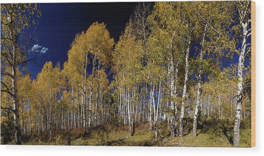 Wood Print featuring the photograph Autumn Walk In The Woods by James BO Insogna