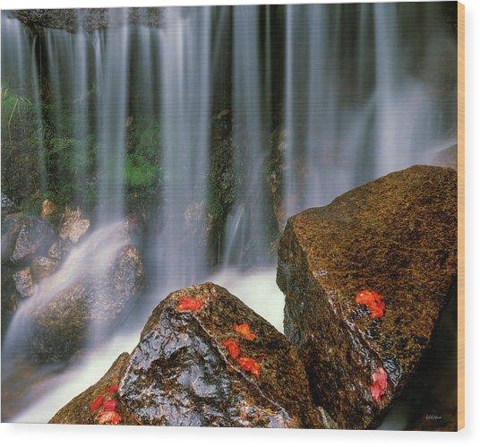Autumn Waterfall Wood Print by Leland D Howard