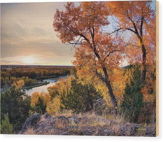 Autumns Best Wood Print by Leland D Howard
