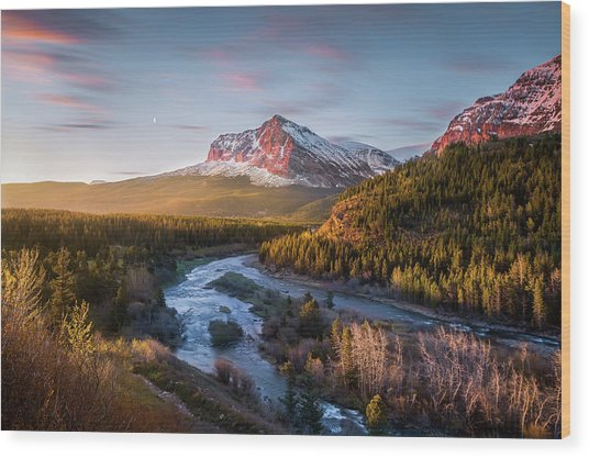 Awakening // Many Glacier // Glacier National Park  Wood Print
