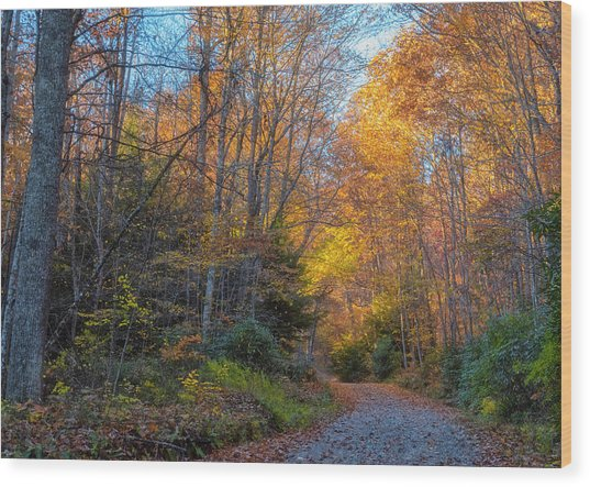 Back Road Beauty Wood Print