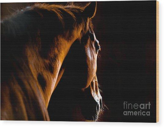 Back Shot Of A Horse Wood Print