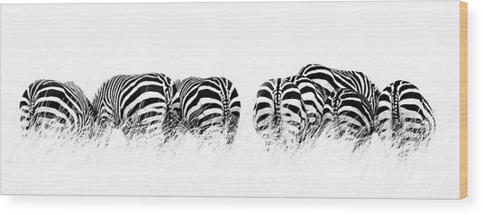 Back View Of Zebras In A Row  Horizontal Banner Wood Print