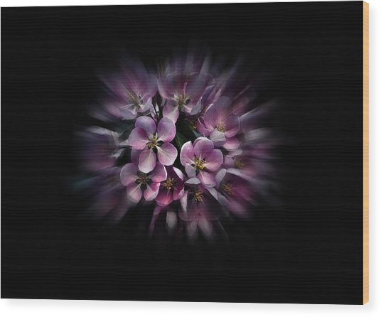 Wood Print featuring the photograph Backyard Flowers 47 Color Flow Version by Brian Carson