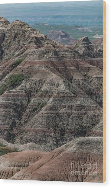 Badlands Portrait Wood Print