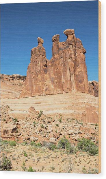 Balanced Rocks In Arches Wood Print