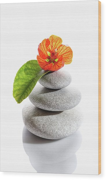 Balanced Stones And Red Flower Wood Print by Gm Stock Films