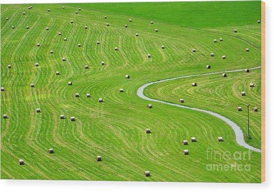 Bales Of Hay On Meadow. Aerial View On Wood Print