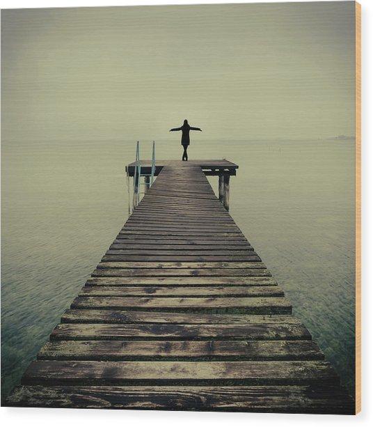 Ballerina Pose At Idyllic Lake At Winter Wood Print