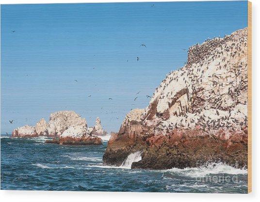 Ballestas Islands, Paracas National Wood Print