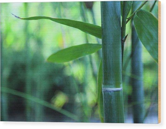 Bamboo 0321 Wood Print