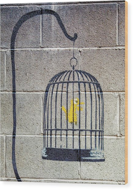 Wood Print featuring the photograph Banksy Bird Cage Detroit by Gigi Ebert
