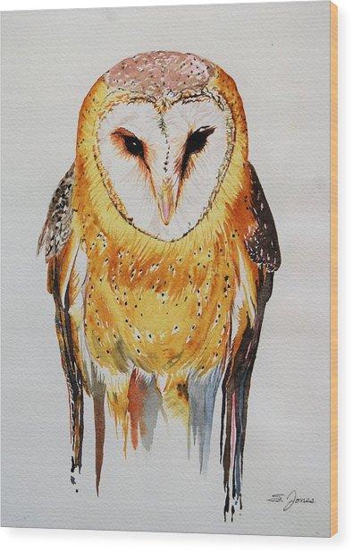 Barn Owl Drip Wood Print