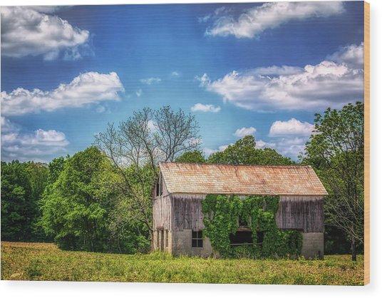 Barn With Ivy Wood Print