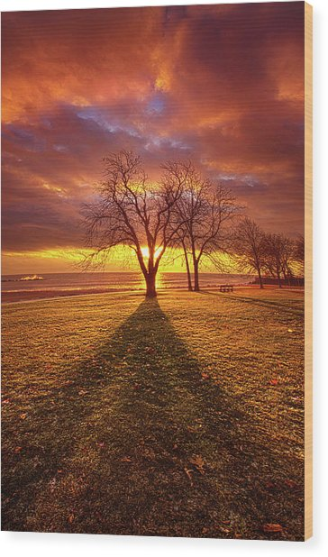 Wood Print featuring the photograph Be Still In The Moment by Phil Koch