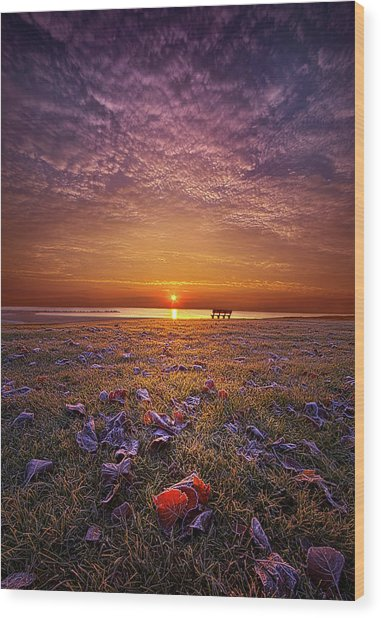 Wood Print featuring the photograph Be The Light by Phil Koch