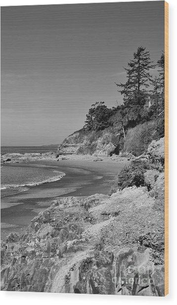 Beach 4 Wood Print