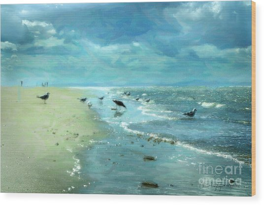 Beach Blues IIi Wood Print