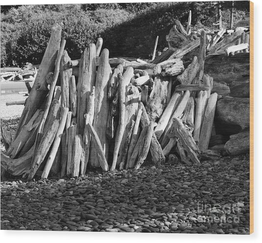 Beach Fort 2 Wood Print