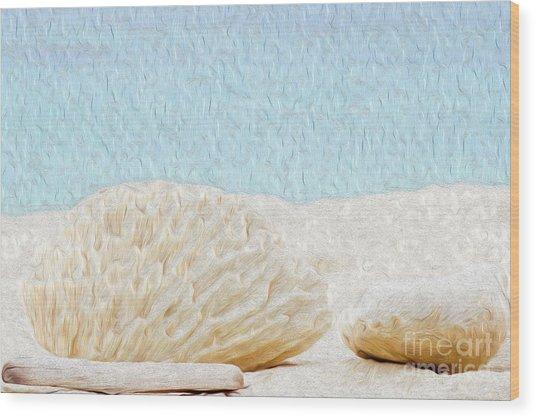 Beach Rocks At Seven Mile Beach In Grand Cayman Wood Print