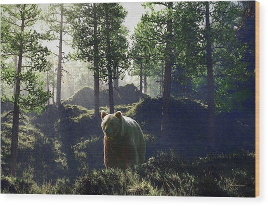 Bear In Forrest Wood Print