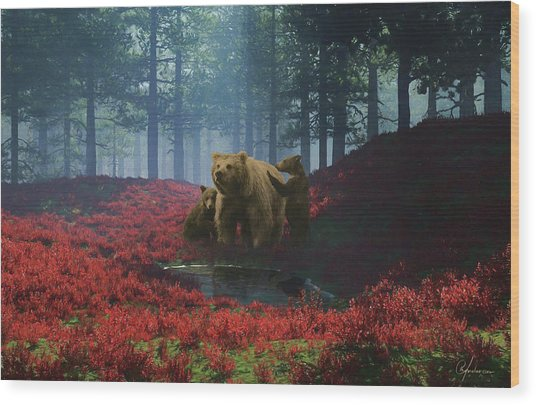 Bear With Cubs Wood Print