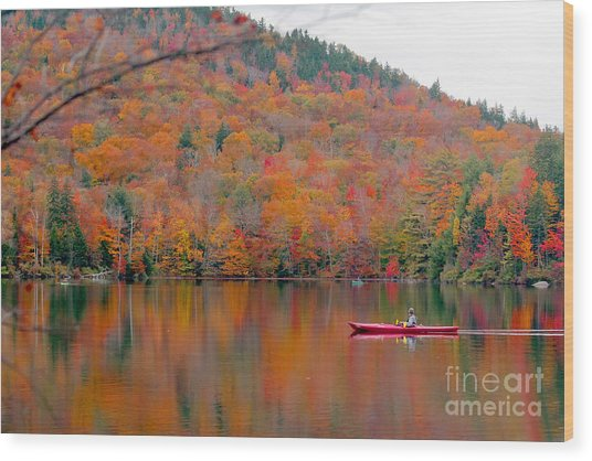Beautiful Fall Landscape With  Lake And Wood Print