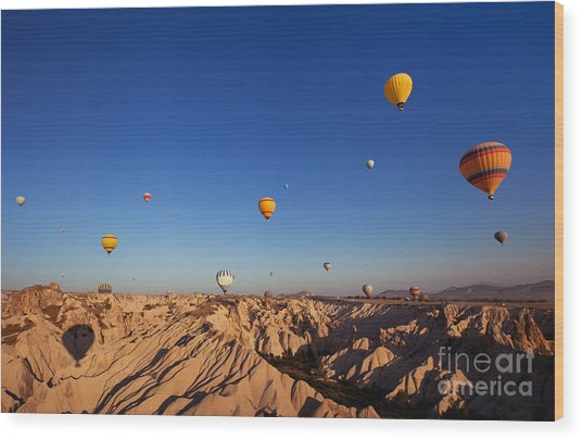 Beautiful Landscape With Hot Air Wood Print