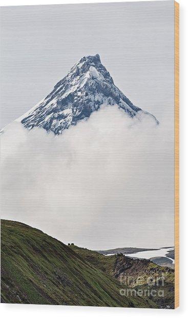 Beautiful Mountain Landscape Of Wood Print by Alexander Piragis