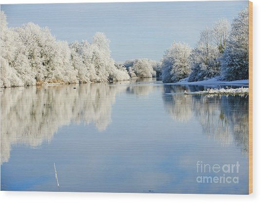Beautiful Sunny Day In The Winter On Wood Print