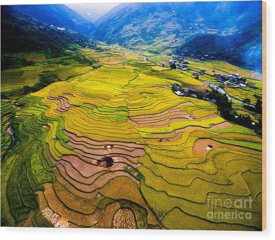Beautiful Terraced Rice Field In Wood Print