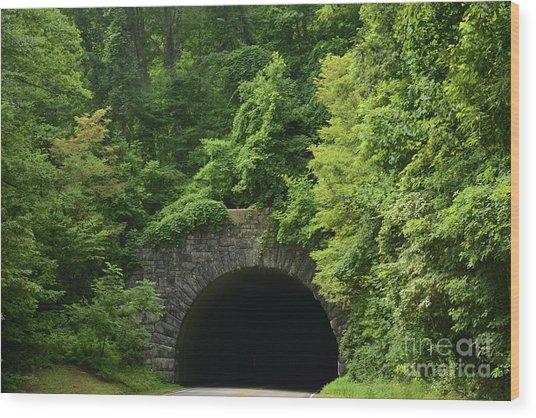 Beautiful Tunnel With Greenery, Nc Wood Print