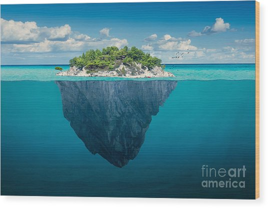 Beautiful Underwater View Of Lone Small Wood Print