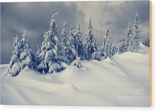 Beautiful Winter Landscape With Snow Wood Print
