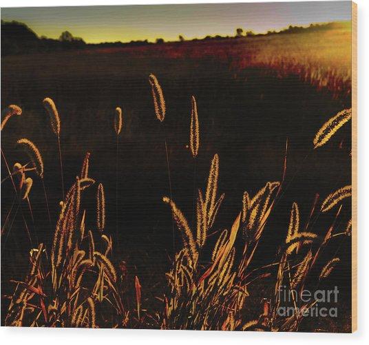 Beauty In Weeds Wood Print