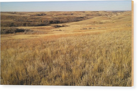 Beauty On The High Plains Wood Print