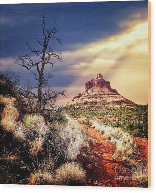 Bell Rock Wood Print by Scott Kemper