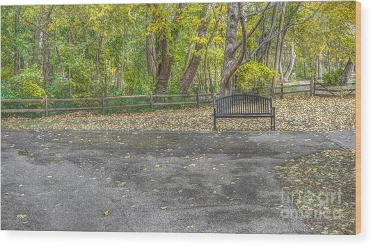 Bench @ Sharon Woods Wood Print
