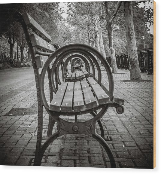 Bench Circles Wood Print