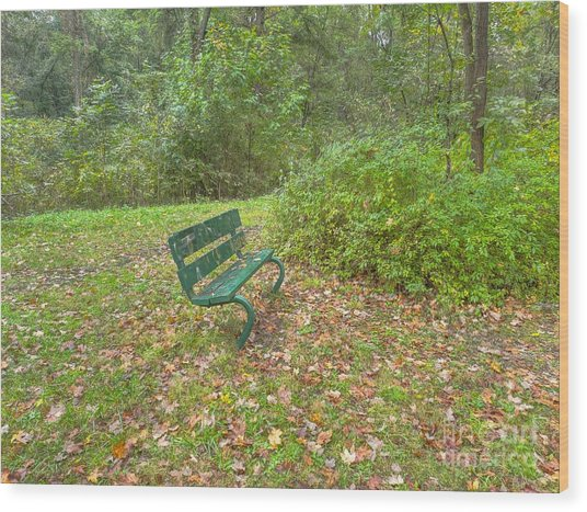 Bench Overlooking Pine Quarry Wood Print