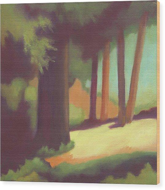 Berkeley Codornices Park Wood Print