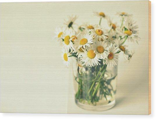 Big Bunch Of Camomile Flowers Wood Print