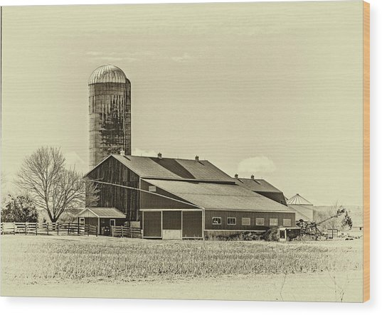 Big Red Barn 3 Sepia Wood Print