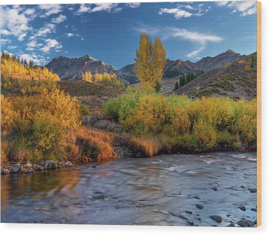 Big Wood River Color Wood Print by Leland D Howard