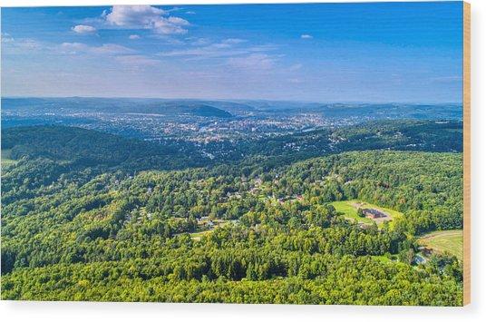 Binghamton Aerial View Wood Print