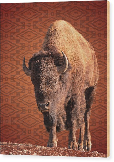 Bison Blanket Wood Print
