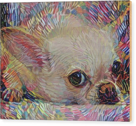 Bitsy The Chihuahua Wood Print