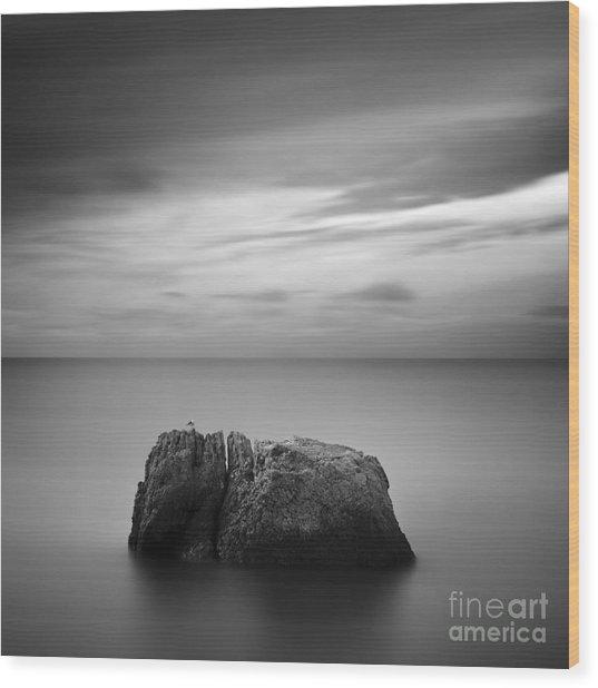 Black & White Rocky Seascape Scene With Wood Print by Yury Bird