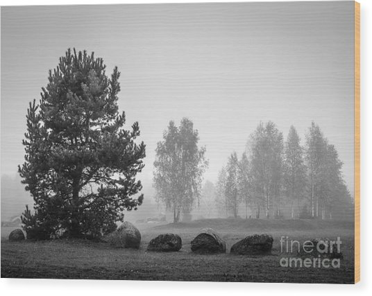 Black And White Landscape With Stones Wood Print