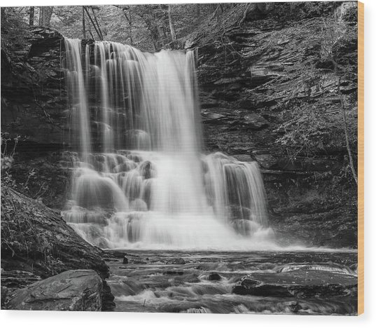 Black And White Photo Of Sheldon Reynolds Waterfalls Wood Print